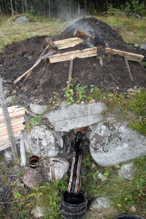 För några år sedan hittade Roland Axelsson den här gamla tjärdalen. Nu är den rustad och i helgen droppade det väldoftande tjära igen.