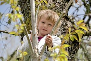 Klättring. En rolig sak man kan göra på familjelägret är att klättra i träd, säger Tora Gustafsson.