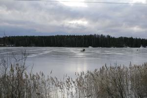 Det går inte att lita på isarna nu, menar Grycksbo Fiskeklubb. Bilden är en arkivbild tagen vid ett tidigare tillfälle.