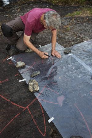 Sven-Gunnar Broström ritar på plasten som ligger över en del av Sveriges största hällristning föreställand en älg.
