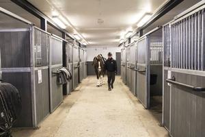 Den gamla ladugården har nu plats för nio hästar. Dessutom finns där duschplats och sadelkammaren med matplats.
