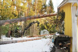 Förutom många skador på egendom drabbades tusentals hushåll av längre strömavbrott.