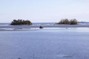 Skarven har bosatt sig på öarna Våtåren och Tvågranaskär precis utanför Skärså.