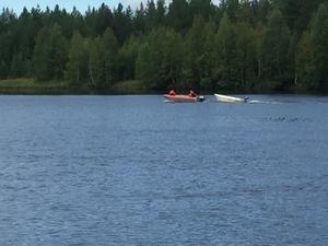 Räddningstjänsten ryckte ut till vad som misstänktes först vara en drunkning på Ljusnan strax utanför Sveg.
