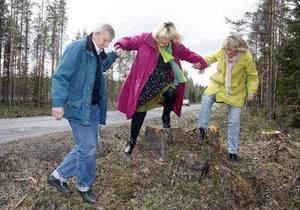 – Eftersom jag heter Hulda på höjda ska jag stå högst, säger Agneta Hultin från Lövsjön. Kjell-Jonas Enarsson och Maria Söderberg hjälper Agneta upp på stubben, när de skulle posera vid väg 339 under gårdagen.