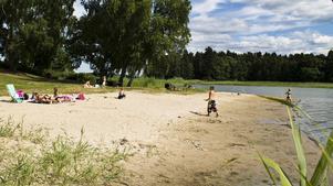 Nu kan man åter bada vid Kärleksudden – som på denna bild som togs för några år sedan. Foto: Thomas Lauffs/ NT Arkiv