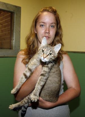 Mari Ekengren tycker det är fruktansvärt att människor överger sina husdjur. Honkatten som hon tar hand om är förmodligen gravid.