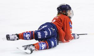 Förhoppningen är att libero Jocke Svensk ska resa sig från sin knäskada lagom till slutspelet.