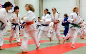 Snabbhet och smidighet. Oavsett färg på bältet så kan alla träna olika judotekniker med varandra.
