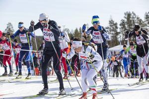 Charlotte Kalla kommer till start under SM-avslutningen i Gällivare där hon kan bli historisk.