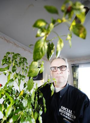 Matlagningsintresset fick Håkan Bertilsson att bli hängiven chiliodlare.