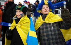 Emil Laudon och Filip Grinde klädde sig i flaggor och med sina ansiktsmålningar förstärkte de bilden av en folkfest i helgen.