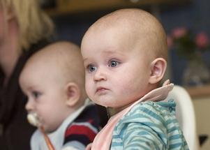 Erik och Saga Mattsson har hunnit bli 7,5 månad gamla.