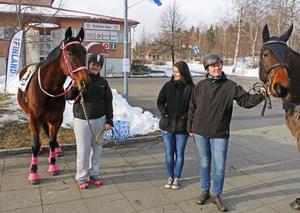 Torsåkers hästintresseförening ställde också upp på Camp Finland. Evelina Lundgren, Fanny Wigö och Maria Björklund höll ställningarna.