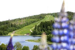 Olyckan inträffade i Sidsjöbacken när Petter var ute på ett träningspass med sin mountainbike.