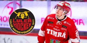 Filip Hållander, som draftats av Pittsburgh Penguins, är nu klar för spel i Luleå. Foto: Pär Olert/BILDBYRÅN