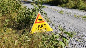19 vuxna älgar och runt 20 kalvar får skjutas i Skinnskatteberg.