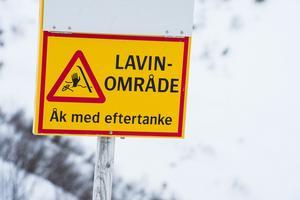 Arkivbild: Erik Nylander/TT