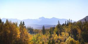 Naturen är det stora dragplåstret i länet, men inte det enda.