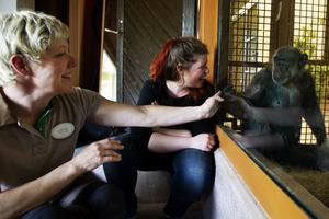 Djurskötaren Lotta Widlund och Natalie Magnusson, operativ djurchef hälsar på Linda och Torsten.