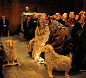 Herdarna Åsa Schäder och Eva Nordin vallade sina får finurligt placerade bland publiken. Foto: Kenth Wiklund