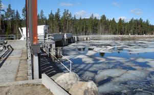Sjön Balungen norr om Enviken är nära sin översta dämningsgräns. Under torsdag lunch återstod 25 centimeter.