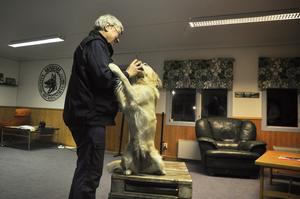 Kerstin Barkman med sin Golden retriver Anja går kursen tillsammans.