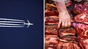 Minska ditt flygande och köttätande – det är två saker du kan bidra med för att minska negativ påverkan på miljön, skriver Naturskyddsföreningen i Örnsköldsvik.