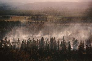 Torgåsbranden var 1.7 mil i omkrets när den var som värst.