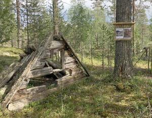 Rester av det som en gång var jaktkojan Pjuketta byggd av storjägaren Nall-Lars från Brunnsberg.