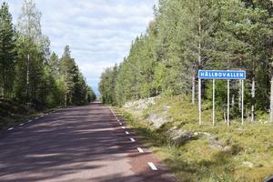 I skogen längs en anslutningsväg mellan Älvdalen och Särna ligger den lilla finnmarksbyn Hållbovallen med fem fasta invånare. I byn växte Leo Persson upp - och bor sedan tio år.