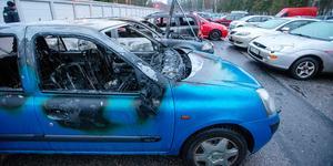 Tre bilar totalförstördes i branden och ytterligare några skadades.