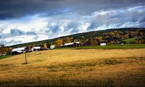 Mörka moln samlas vid horisonten - men det finns hopp för landsbygden.