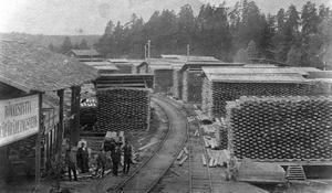 Så här såg det ut på sågverket i Rönneshytta under 1920-talet då verksamheten var i full gång. Fram till 1966 ägdes sågen av Skyllbergs bruk och det sista året innan nedläggningen av Hasselfors såg. Foto: Lerbäcks hembygdsförening