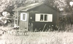 Juli 1973. På södra Björnön har Asea sin stugby i varsamt bevarad naturmiljö. Småstugorna har sommartid många unga invånare.