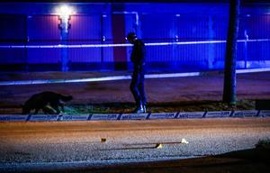 En polishund fanns på platsen under kvällen.