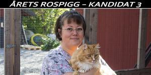"""I dagsläget finns 85 katter placerade i huset och över åren har trycket varit stort på verksamheten. """"Det är ju svårt att tacka nej när det kommer in en hemlös katt""""."""