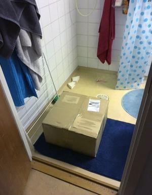 Preparerad. Kartongen som 21-åringen kvitterade hade preparerats av polisen och innehöll annat gods när den hittades i hennes badrum. Foto: Polisen