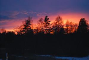 Solnedgång i Alfta