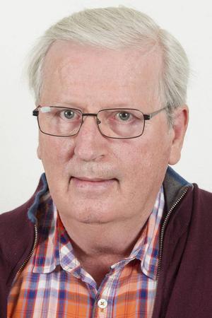 Thomas Johansson Nordqvist kommer inte kandidera för Sverigedemokraterna i höstens val. Foto: Stefan Pernils