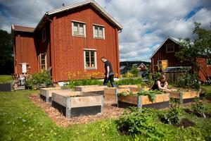 Fasaden till gården i Domsjö är k-märkt och familjen Libells trädgårdsdrömmar passar perfekt in i idyllen.