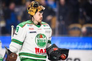 Justin Pogge i Rögle under förra säsongen. Bild: Daniel Stiller/Bildbyrån.