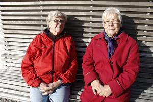 Kerstin Salomonsson och Brita Sandin lärde känna varandra när Örnsköldsviks Afasiförening bildades 1985. Engagemanget är stort hos de båda vännerna och föreningen har betytt mycket för dem.