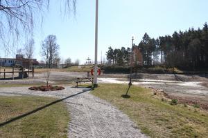 Efter en olovlig plantering av spegelkarp, beslutade kommunen att tillfälligt tömma sjön på vatten.