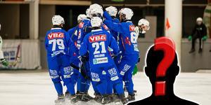 Vänersborg har 14 spelare klara, men bekräftar också att man är på jakt efter nyförvärv.