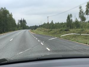 Insändarskribenten tackar för att man röjt längst väg 320 och önskar att man gör det samma på väg 591.
