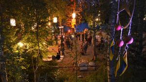 Natur, konst och musik förenade för sista gången en trogen besökarskara  i Ängsholns folkpark, där  Gagnef-festivalen  har arrangerats i 18 år. FOTO: Fredrik Caresten