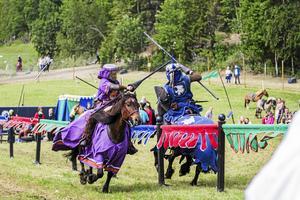 För tredje året arrangeras Västgård Game Fair i Kall och i år räknar man med dubbelt så många besökare som första året. Foto: Tobias Flodin