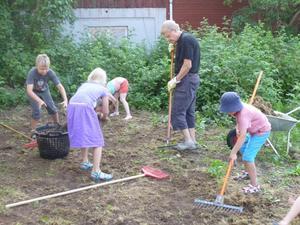 Morfar/farfar Robert med flitiga barnbarn, förbereder sådd av ny gräsmatta.