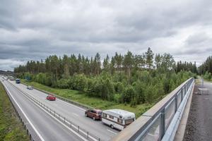Bakom det här skogspartiet vid E14 ligger Östersunds arena. I detta område, motsvarande sex hektar, ska Jämtkraft och Östersundshem bygga Sveriges tredje största solcellspark. Och intresset att köpa andelar är stort.